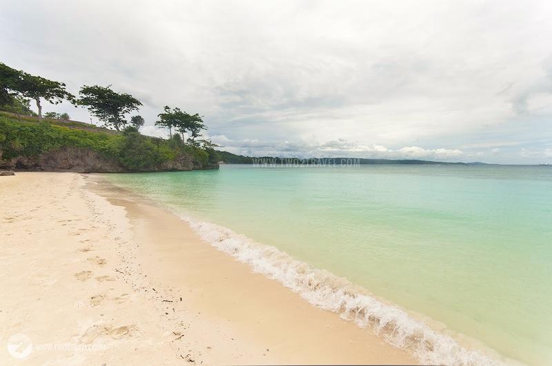 lapus lapus beach