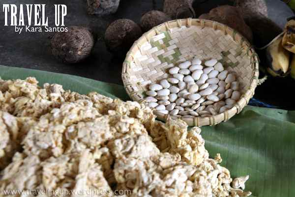 aeta forest food